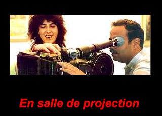 Projection scope